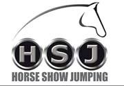 Logo HSJ